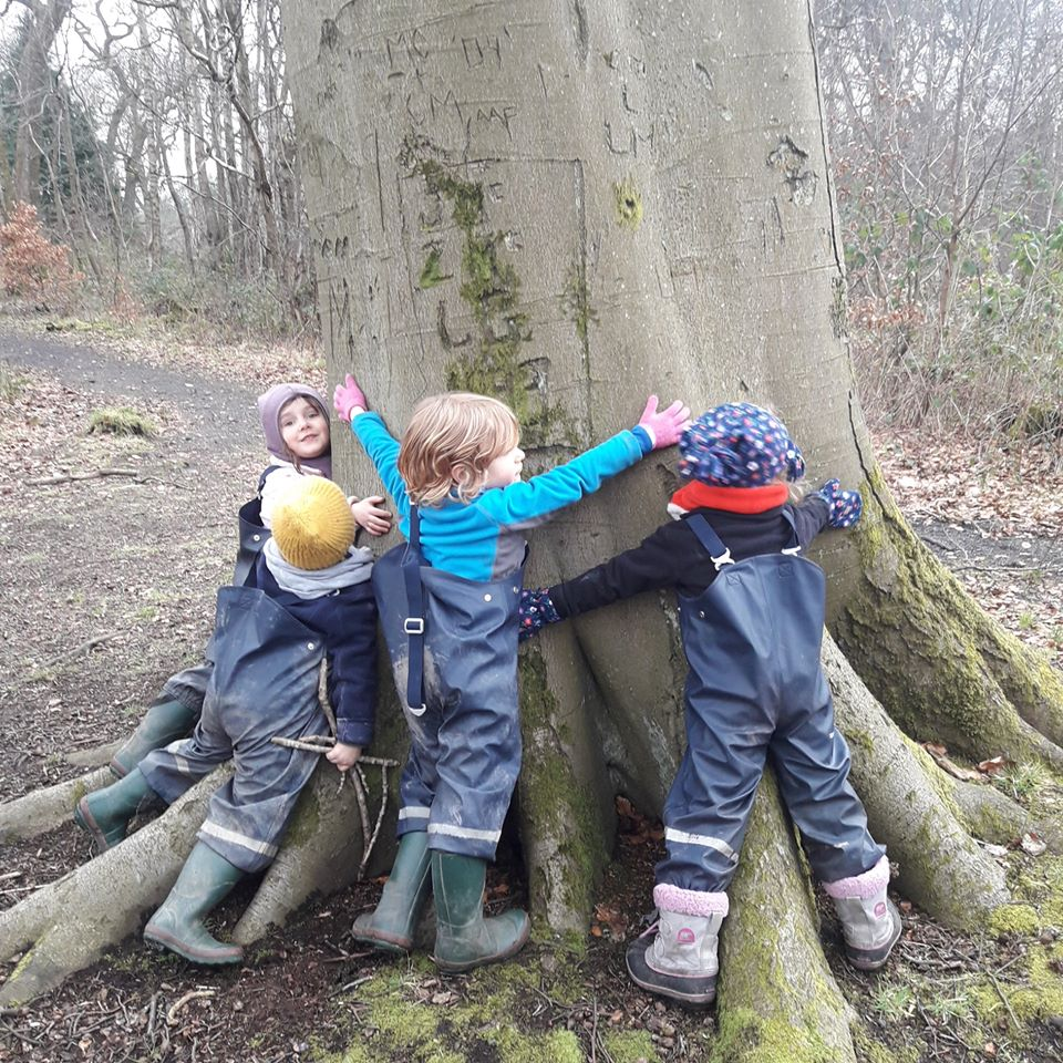 measuring tree width